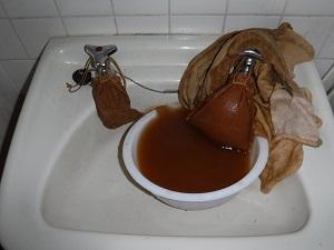 洗面台洗浄中(給水)